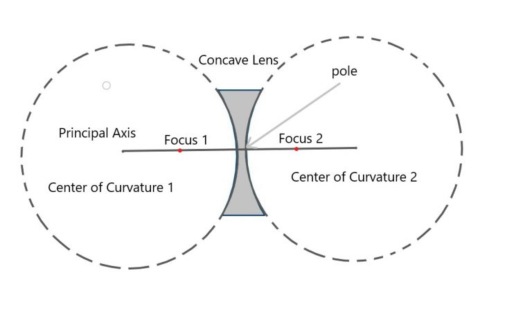 Concave and Convex lens for class 7 - parts of a lens