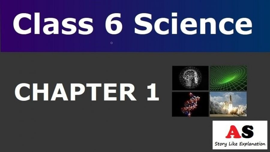 Class 6 Science Chapter 1