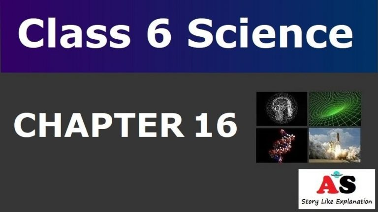 Class 6 Science Chapter 16 Notes