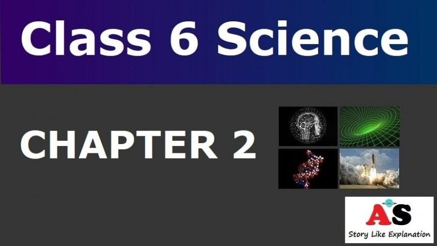 Class 6 Science Chapter 2 Notes