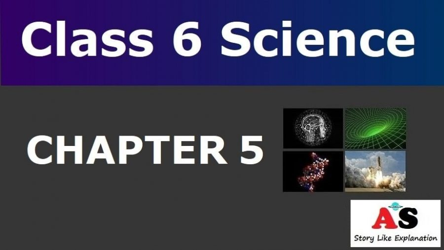 Class 6 Science Chapter 5 Notes