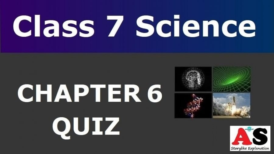 MCQ Questions for Class 7 Science Chapter 6 with Answers (6)