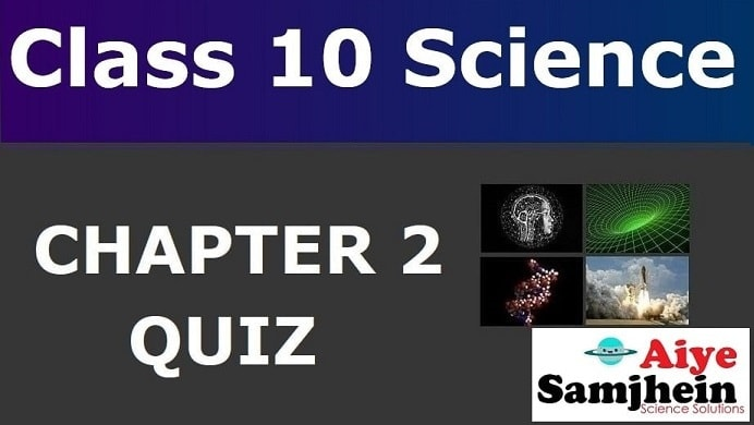 MCQ Questions for Class 10 Science Chapter 2 with Answers