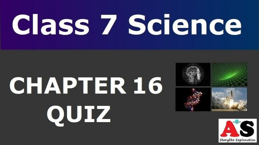 MCQ Questions for Class 7 Science Chapter 16 with Answers